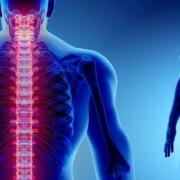 patologie della colonna vertebrale